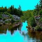Tranquilty on the River by Larry Trupp
