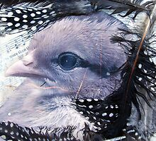 Chick Mixed Media Canvas by angelandspot