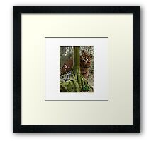 The Cat and Bear Couple Framed Print