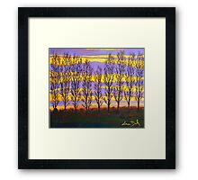 Poplar Sunset Framed Print