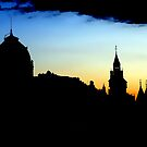 inSEINE Silhouettes by martinilogic