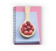 Cranberries Spiral Notebook