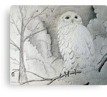 Night Owl Drawing Canvas Print