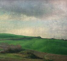 Toscana Vintage V by Lena Weiss