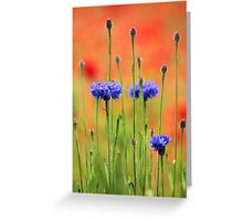Sapphires and Rubies Greeting Card