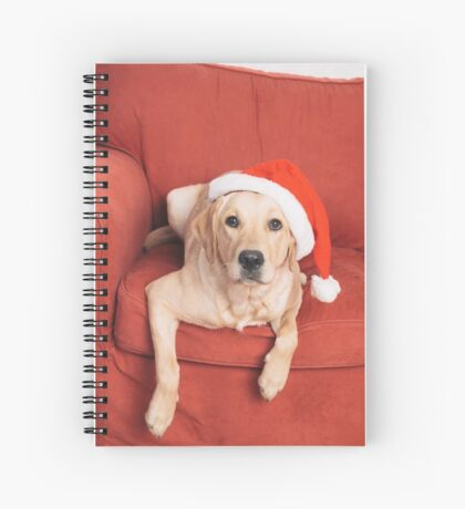 Dog with Christmas hat on armchair Spiral Notebook