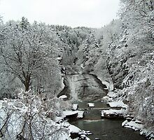 Buttermilk Falls First Snow by AlGrover