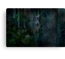 Night Visitor Canvas Print