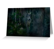 Night Visitor Greeting Card