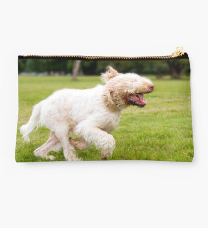 Orange and White Italian Spinone Dog in Action Studio Pouch