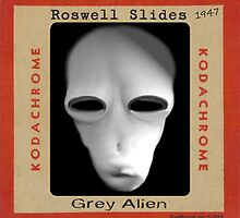 Roswell Slide by EyeMagined