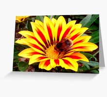 Bumble Bee in a Flower Greeting Card