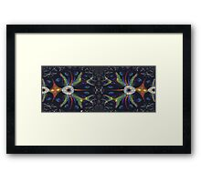 Two Spiders Web Together Framed Print