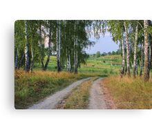 Early Evening in Late Summer Canvas Print