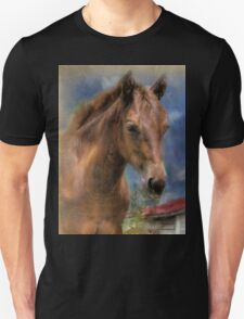 Horse and Old Barn Unisex T-Shirt