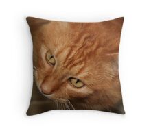 Orange Tabby Looking Up Throw Pillow