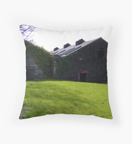 Old whiskey barns Throw Pillow