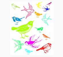 Brightly coloured birds Unisex T-Shirt