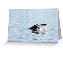 Humpback diving Greeting Card
