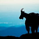Mountain Goat Silhouette by Gary Lengyel