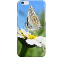 Butterfly and Daisy iPhone Case/Skin
