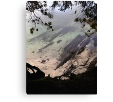 Ocean through the trees  Canvas Print