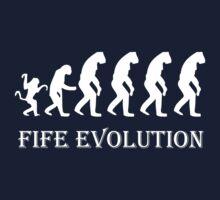 Fife Evolution by David Cumming