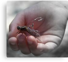 dragonfly hand Canvas Print