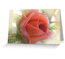 ~ Beauty in Miniature ~ Greeting Card