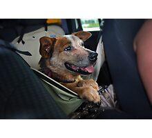 Road Trip2 Photographic Print