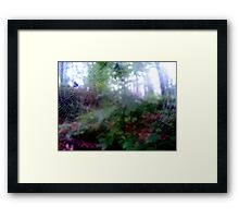 Surprise in your face. Framed Print
