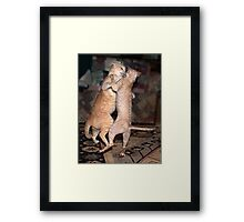 The Dancing Cats Framed Print