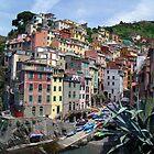 Riomaggiore, Italy by Philip  Brown