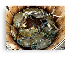 Crab Basket Canvas Print