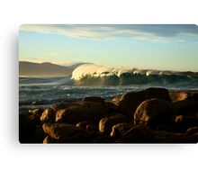 redbill perfection. eastcoast tasmania Canvas Print