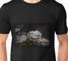 Lehigh River Sculpted Ice Unisex T-Shirt