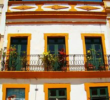 Building of Olinda, Brazil (by Jacantti) by Jacantti