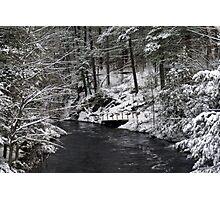 Winter in Muskoka Photographic Print