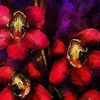 Pink Orchids by Vivien Highground