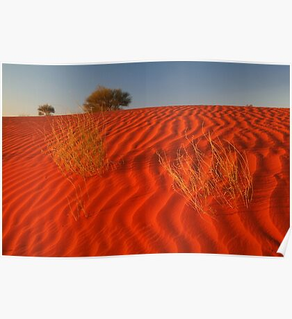 Sundown,Simpson Desert Poster