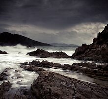 Rocky Cape, Tasmania by Cameron Gray