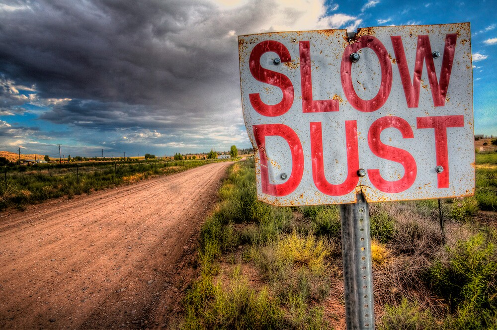 Slow Dust by Bob Larson