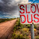 Slow Dust by Bob Larson