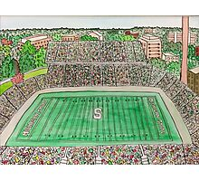 Spartan Stadium Photographic Print