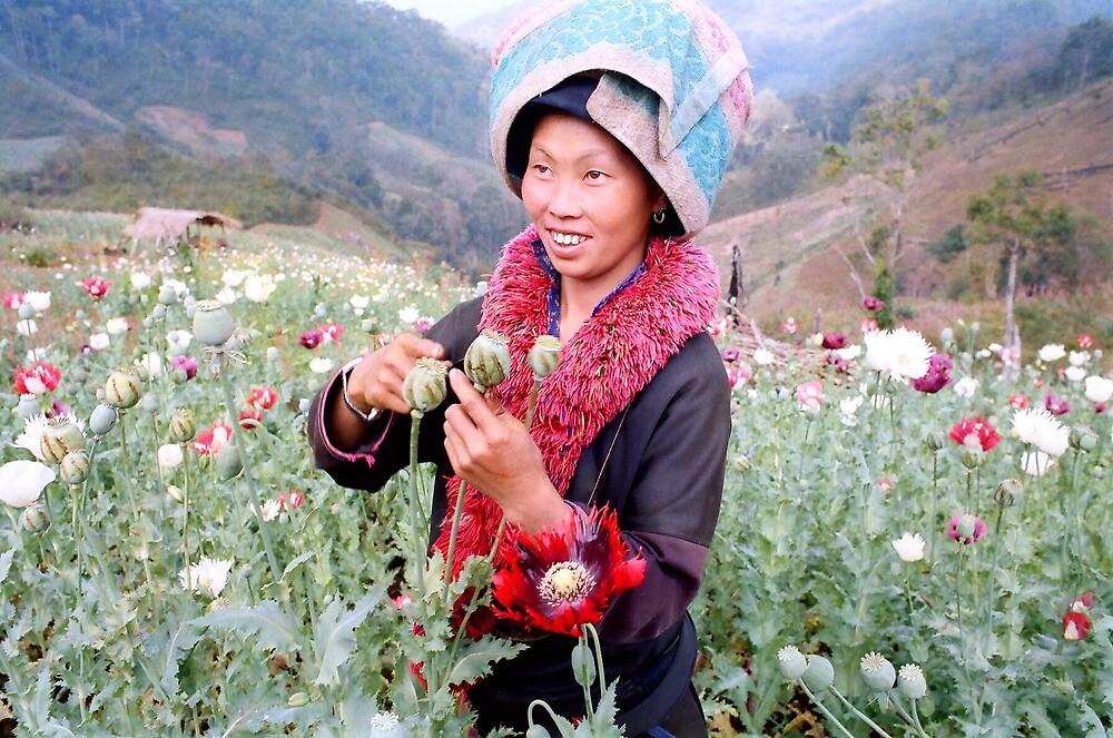 Happy opium poppy farmer by John Spies