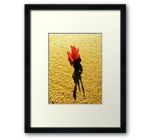 fire coral on Moffat Framed Print