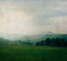 Toscana Vintage III by Lena Weiss
