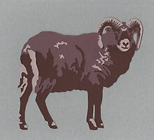 Soay Sheep by thesilkmoth
