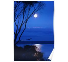 Mystical Moonlight Poster