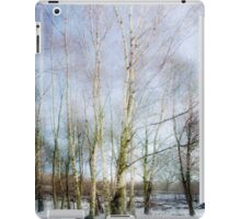 Winter Silver Birch Trees iPad Case/Skin